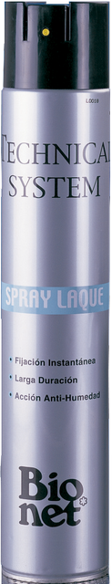 Technical System - Spray Laque 300 ml